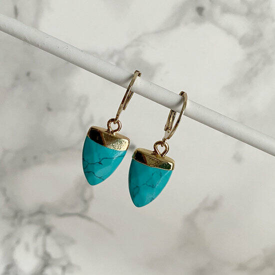 Earrings Turquoise tooth