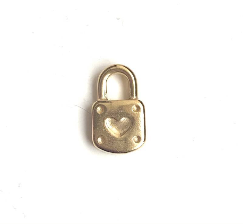 Stainless steel ( rvs) Lock 3d Gold