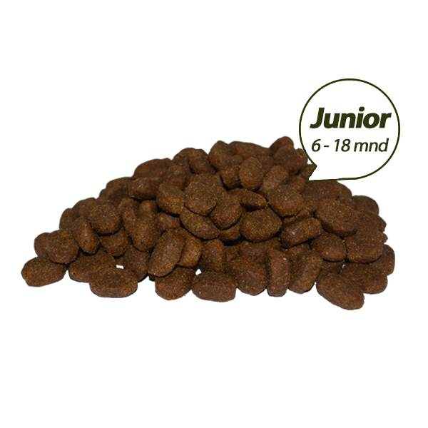 super premium junior brokken 20 kg