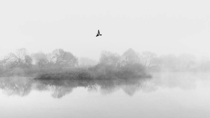 POEM OF THE RIVER II - 9