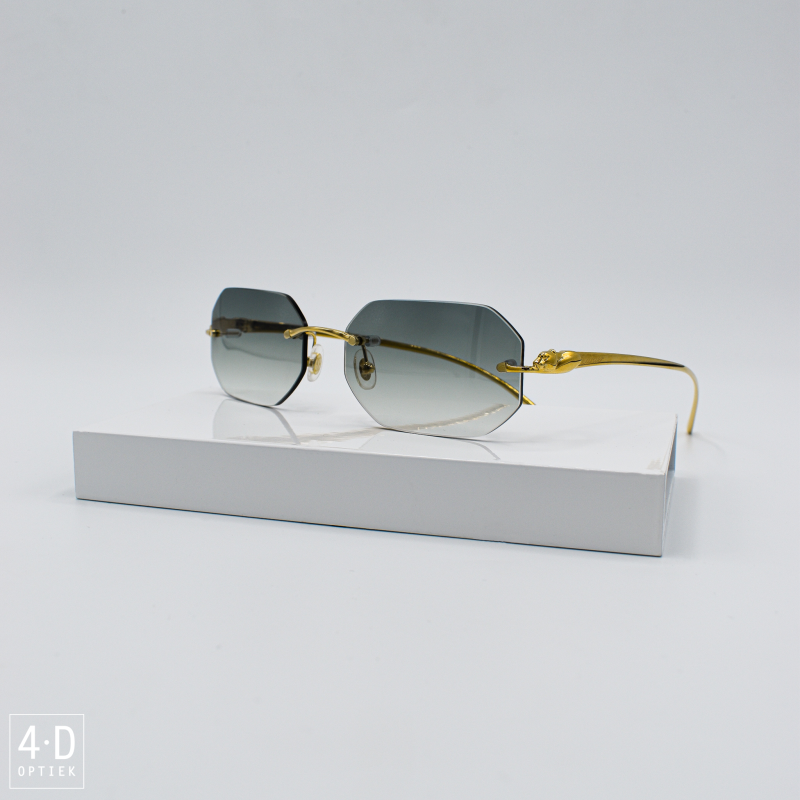 Cartier CT0058O 001 (Customized)