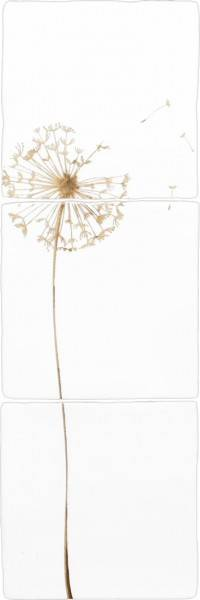 Decortegel set Dandelion 13x13 cm