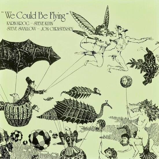 We could be flying (lp)