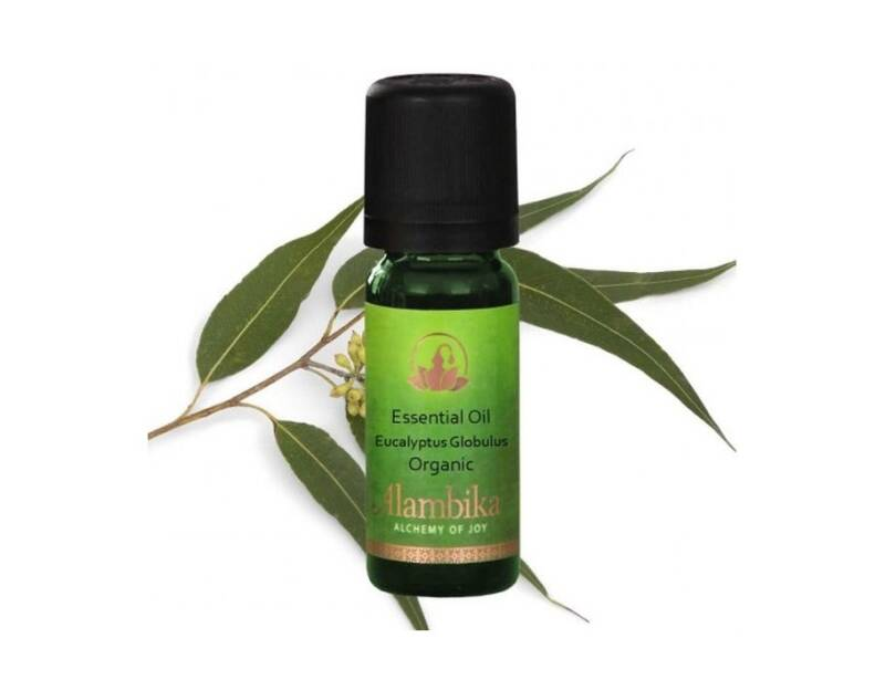 Zelfmaken - Alambika - Aromatische olie - Tea Tree - 10 ml - Tea Tree - 10 ml - (Eco-Gr)