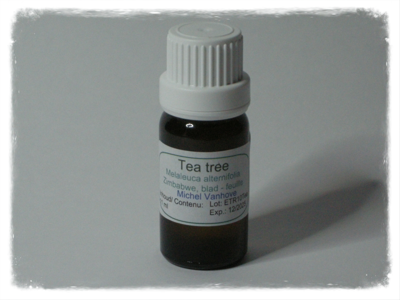 Tea tree 11 ml - Malaleuca altenifolia
