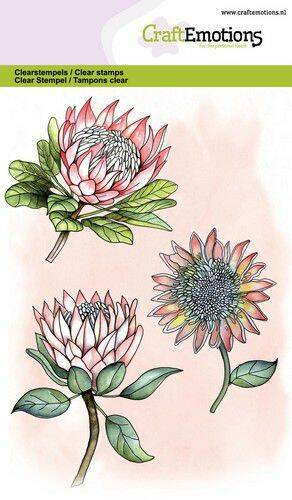 CraftEmotions, Clear Stamp, Protea; 3 bloemen - 130501/1324