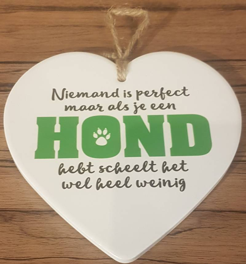 "Stenen hanger ""Niemand is perfect....."""