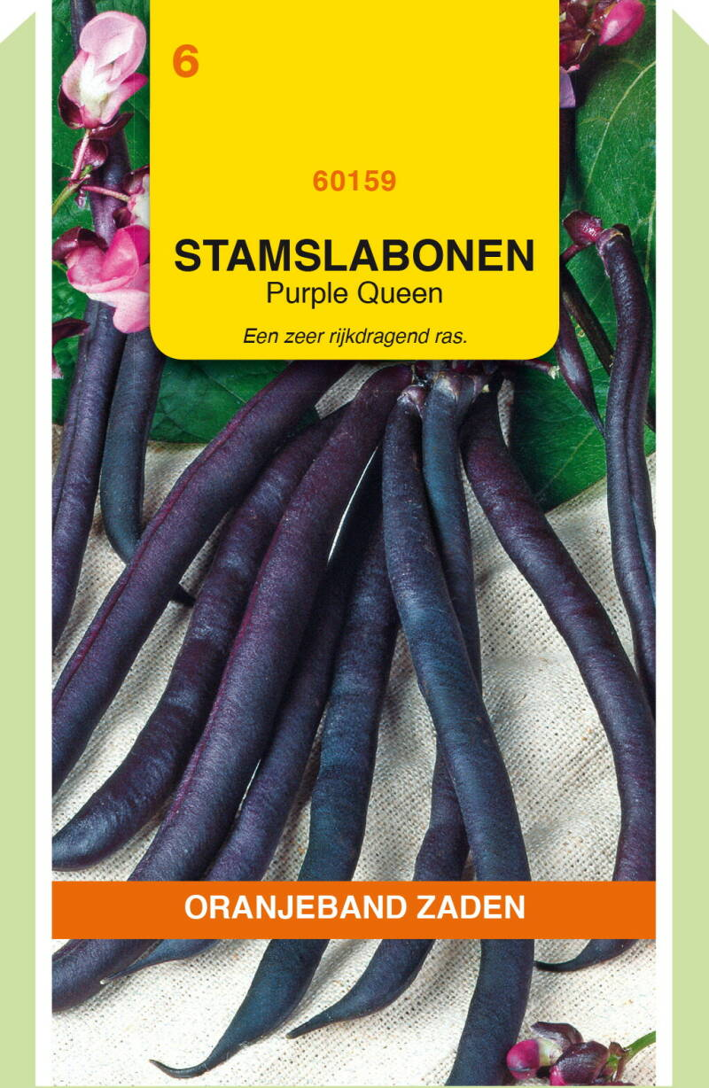 Stamslabonen (Purple Queen) 60159