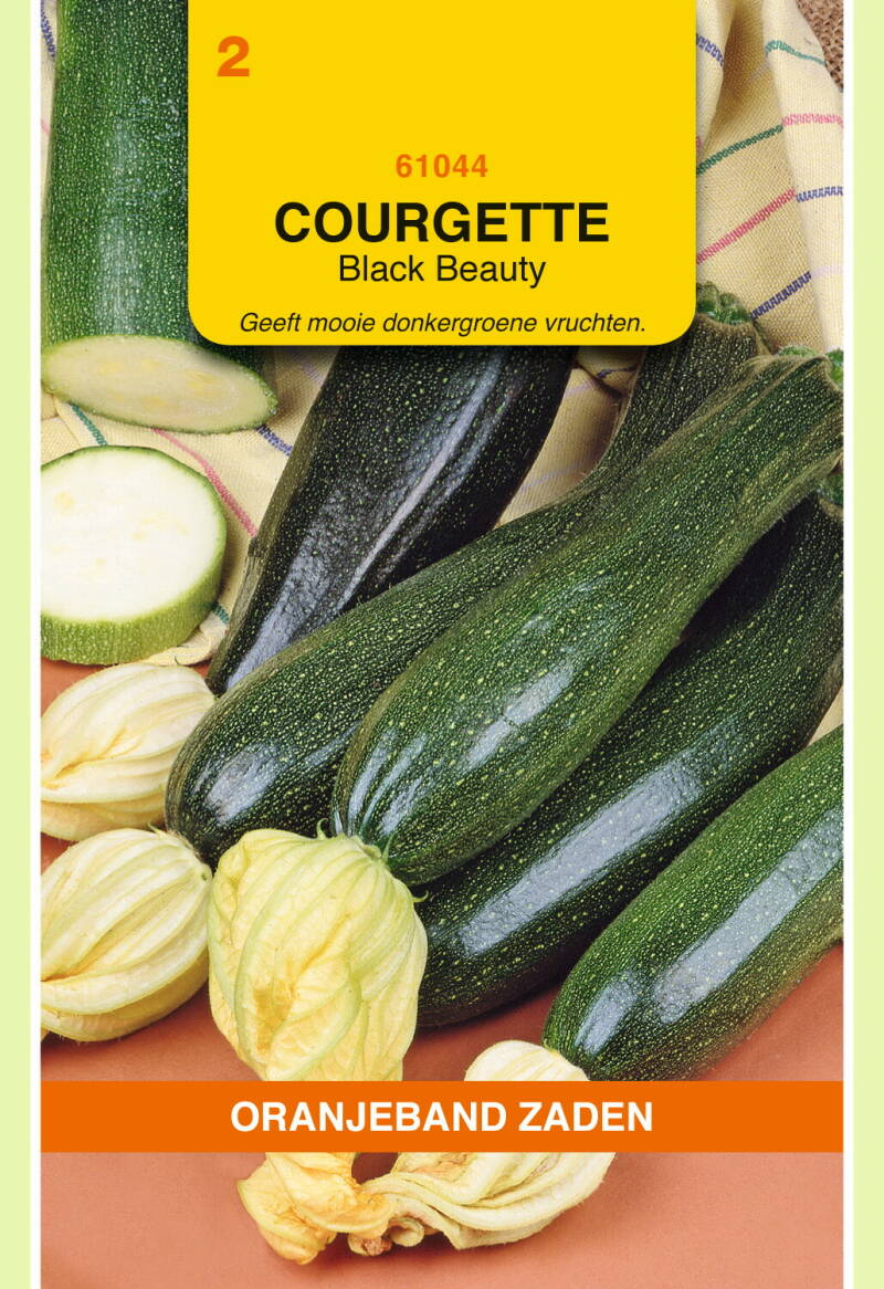 Courgette (Black Beauty) 61044