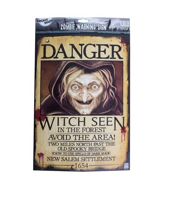 Poster Danger Witch seen