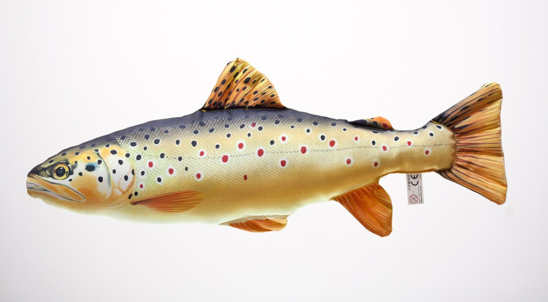 "GABY FISH ""THE BROWN TROUT"""
