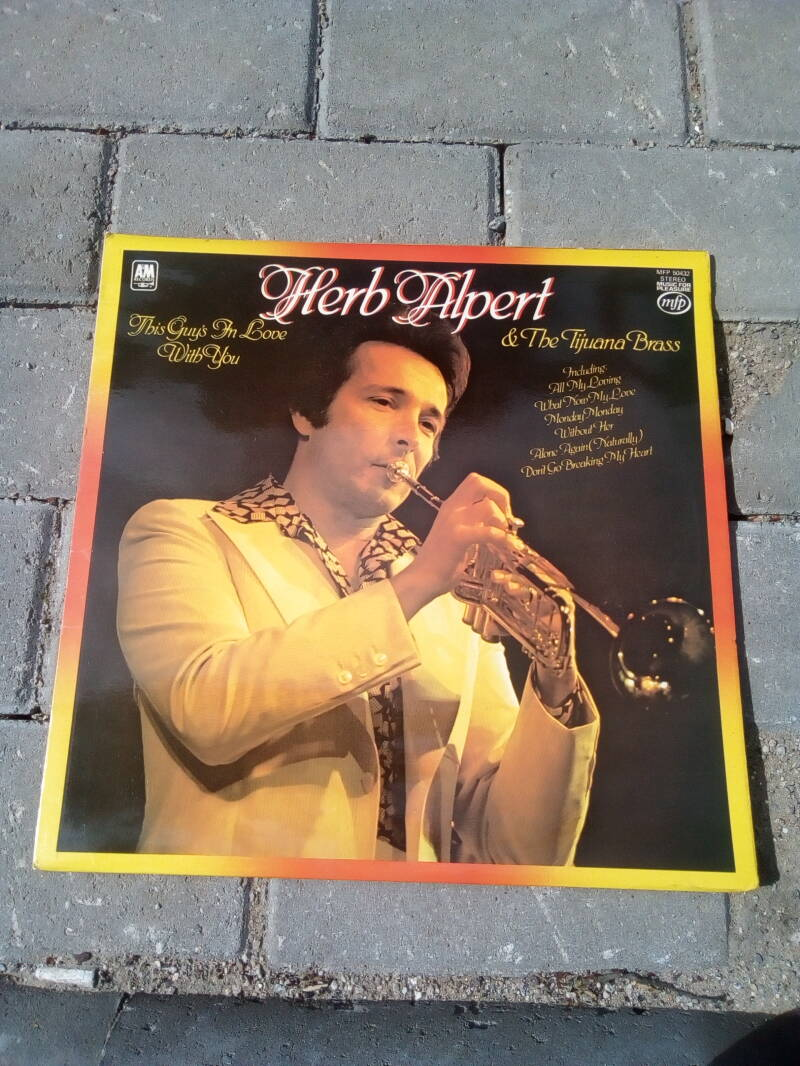 LP Herb Alpert this guy's in love with you