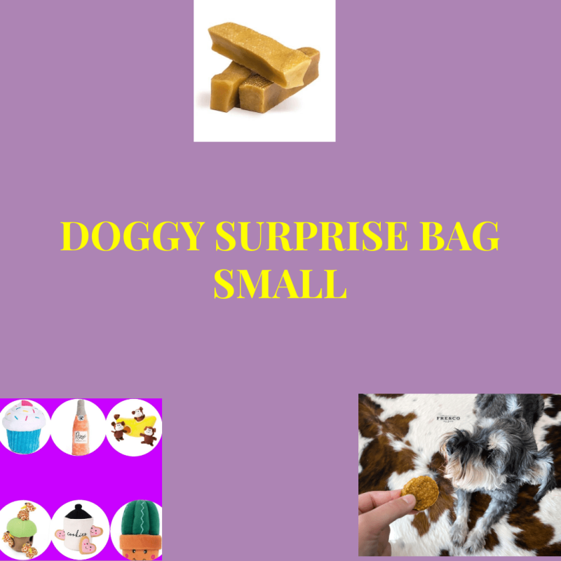 Surprise Doggy Bag Small