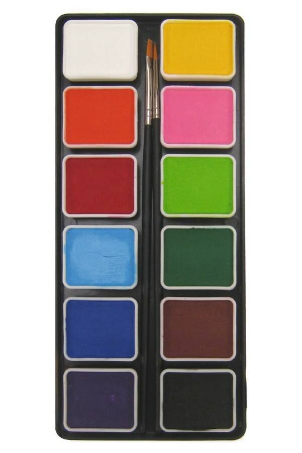 PXP Professional Colours palet regular colours 12 x 6 gram with 2 brushes size 2