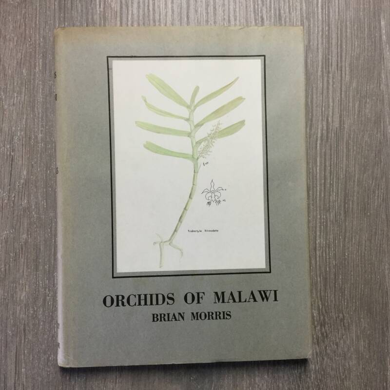 Orchids of Malawi - Brian Morris