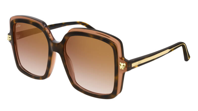 Cartier CT0196S-002 Havana Brown Sunglasses | SALE