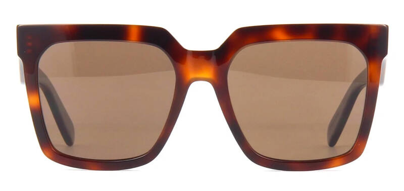 Celine CL4055IN 53E Polarized