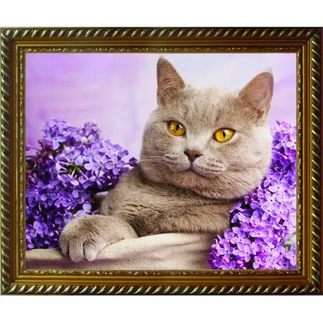 Cat in the Lilac
