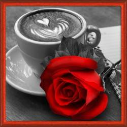 Rose and Coffee