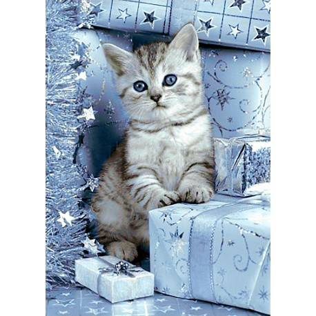 Kitten and Christmas Presents