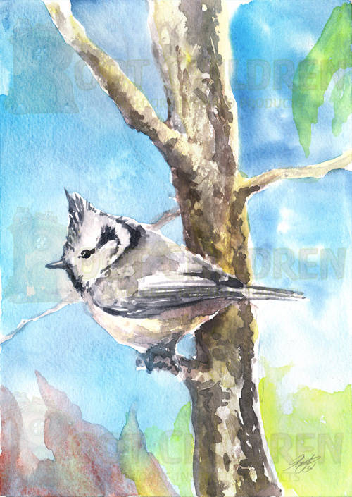 Card - Crested Tit
