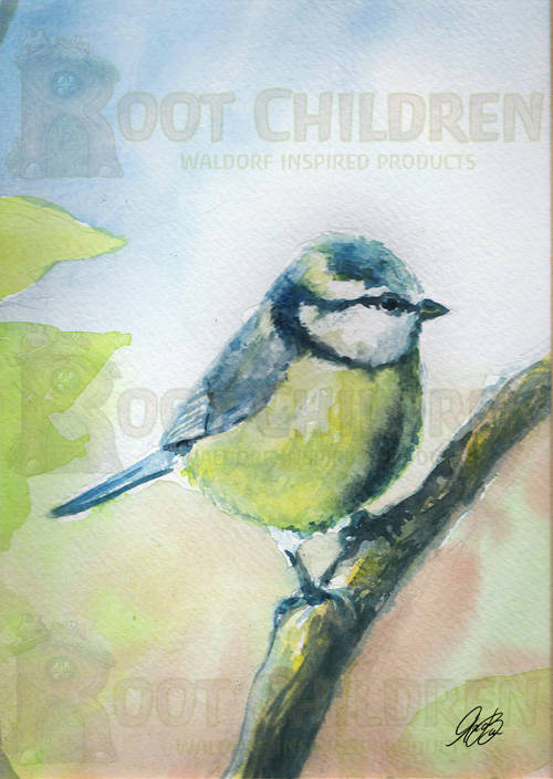 Card - Blue Tit (2)