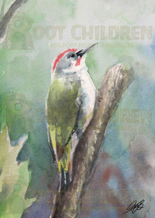Card - Green Woodpecker