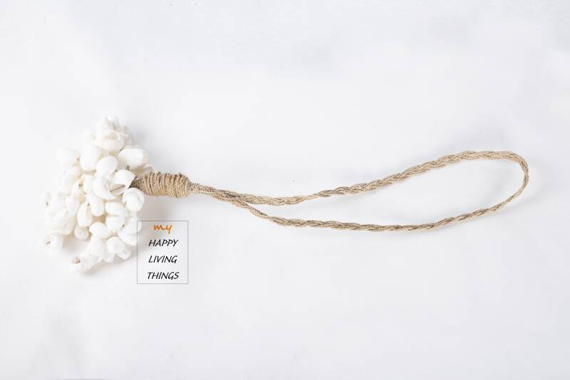 Grapes shell white.. Free delivery !  Gratis verzending !