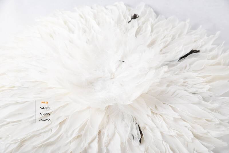 Feather - Juju Round - goose feathers  : white with a little black - S