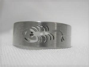 [13093]  Ring stainless steel (maat 21)
