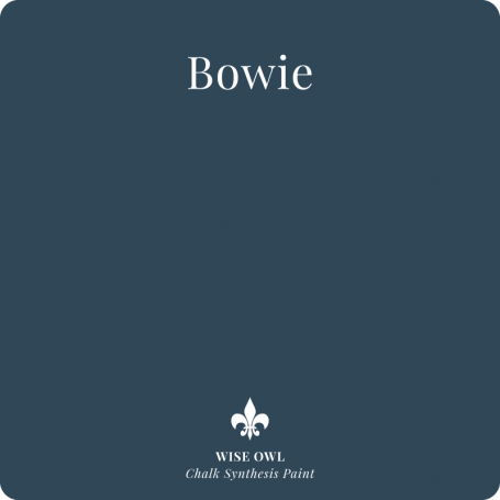 Bowie pint