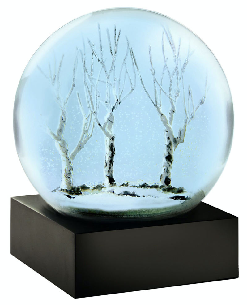 Winter Evening - Snow Globes