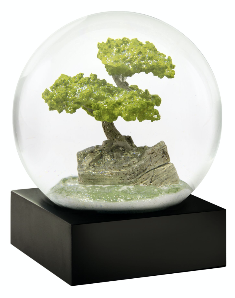 Bonsai - Snow Globes