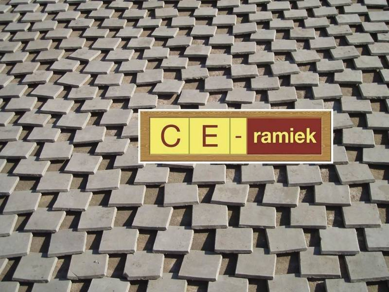 Test item CE-ramiek