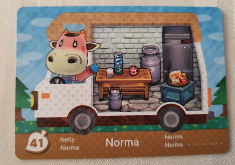 Norma 41