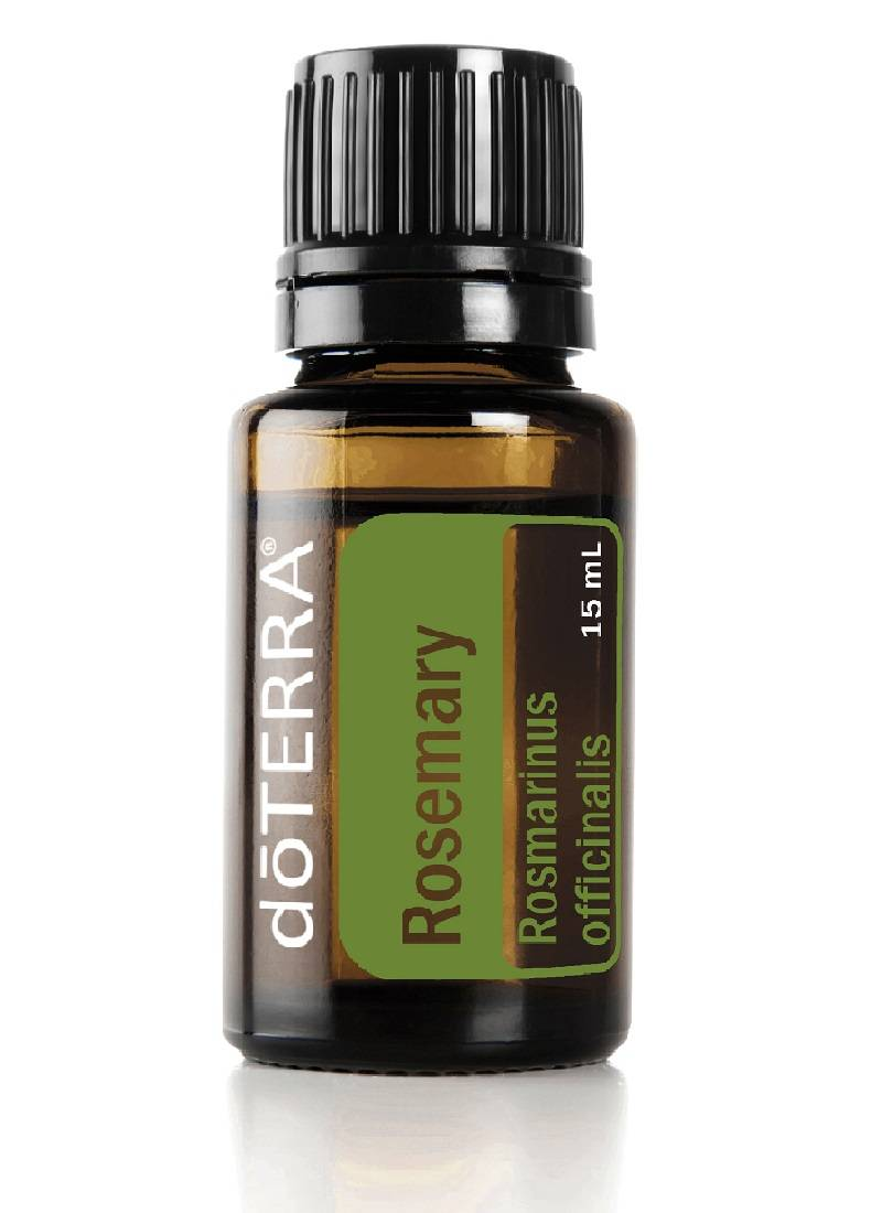 Rosemary-Rozemarijn 15ml