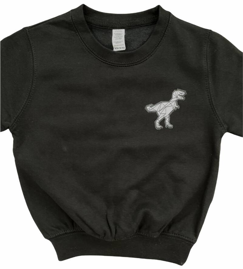 * NEW * Dino Patch Sweater