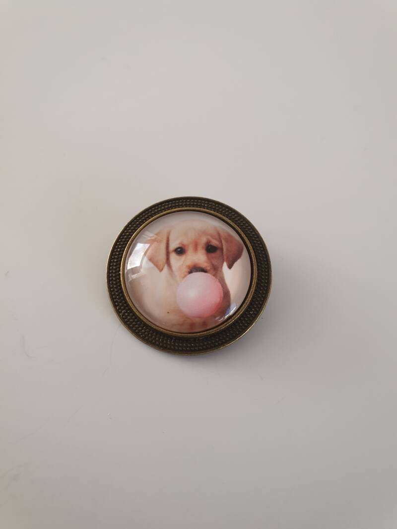 Broche labrador met bubble gum