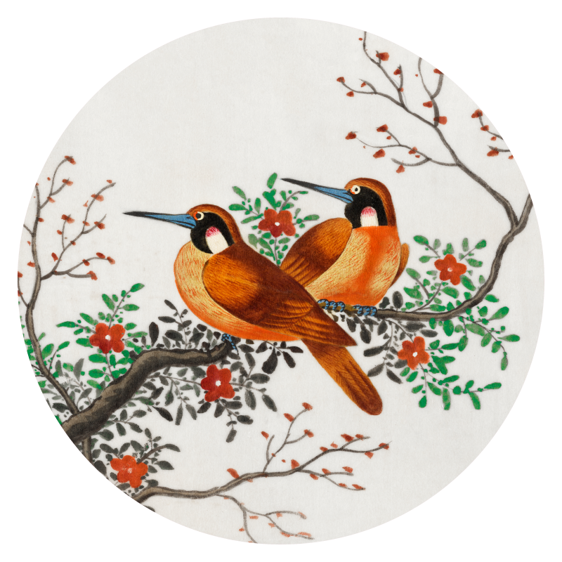 Tuincirkel | art - chinese vogels