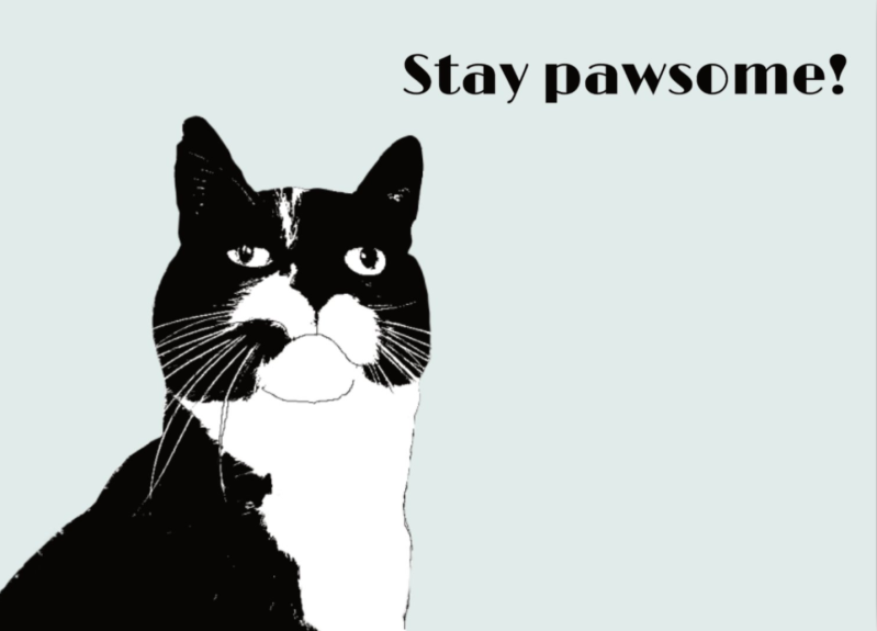 Kaart: stay pawsome