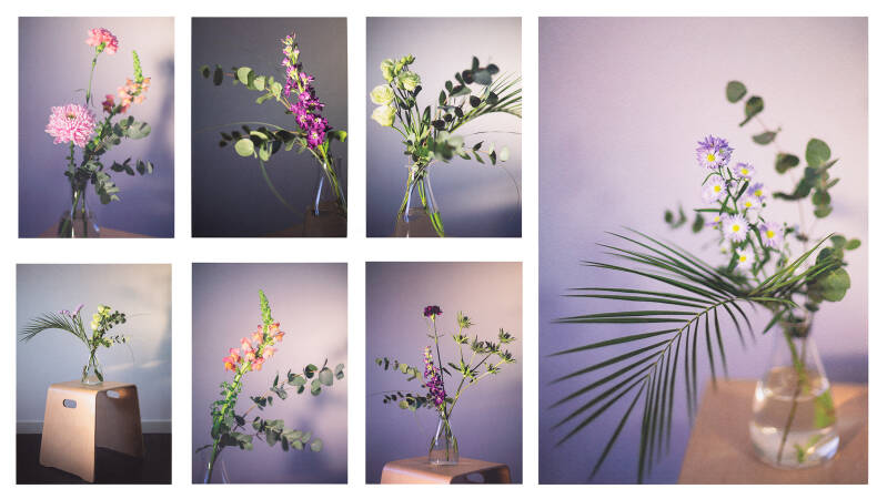 Dreamy flowers | All together