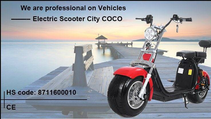 600H1  scooter  uitneembare accu 1000W