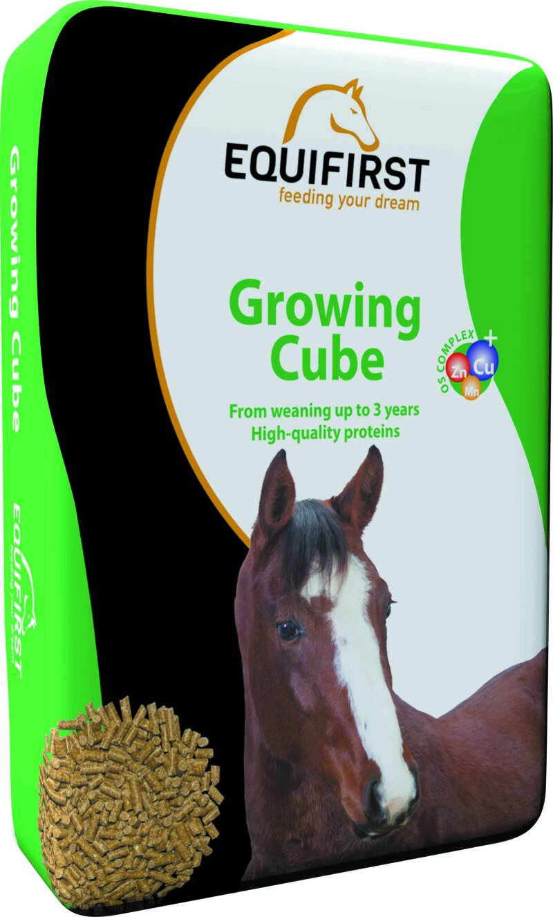 Equifirst Growing Cube