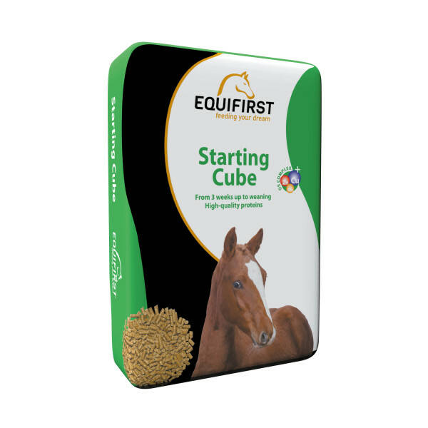 Equifirst Starting Cube