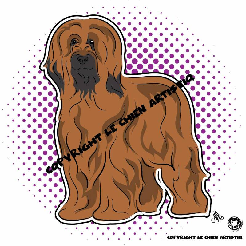 Berger de Brie / Briard ! COMIC > choose your item :)