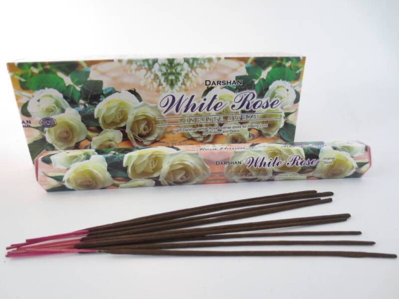 WITTE ROOS / WHITE ROSE