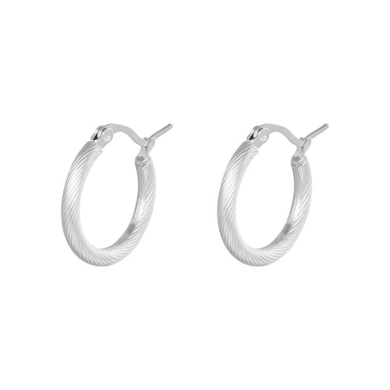 Oorbellen Hoops Twisted 22 mm Zilver