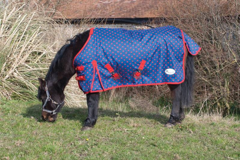 Regendeken Dotty pony