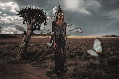 Plexiglas desert woman with butterflies