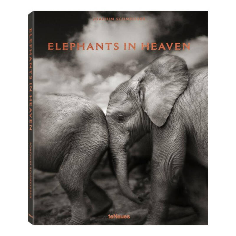 Designer boek Elephants in Heaven